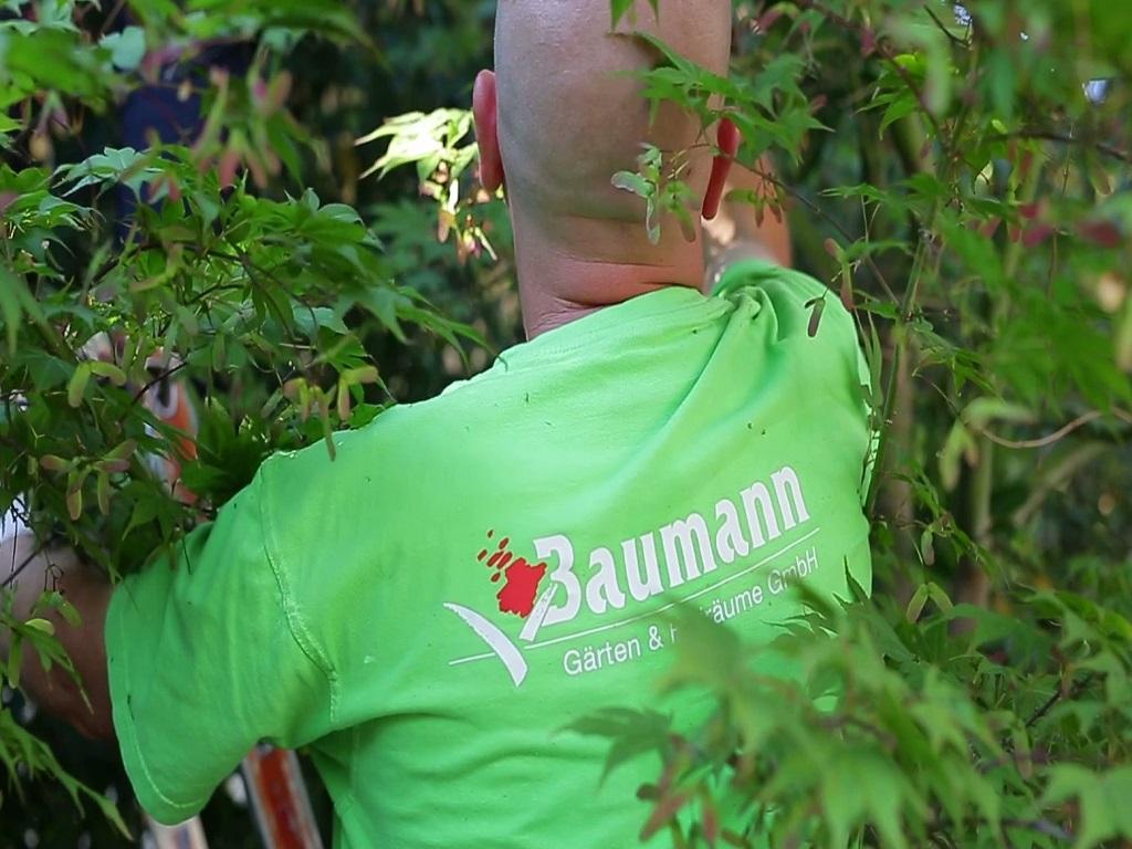 Gartenpflege-Baumann-Gärten-Freiräume