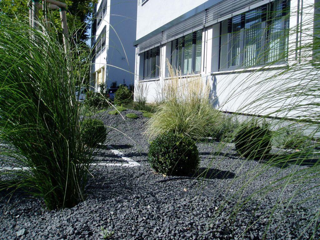 Schenk-Technologiepark-Bepflanzung-Baumann